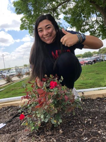 "Katelyn Morgan, 12, spends time enjoying the warm sun and capturing pictures of newly blooming roses outside the new Music Hall. ""It"