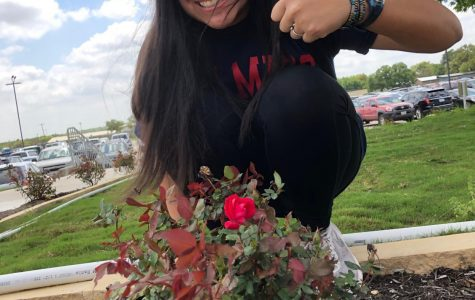 Katelyn Morgan, 12, spends time enjoying the warm sun and capturing pictures of newly blooming roses outside the new Music Hall.