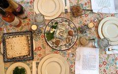 Passover Seder...social distancing style